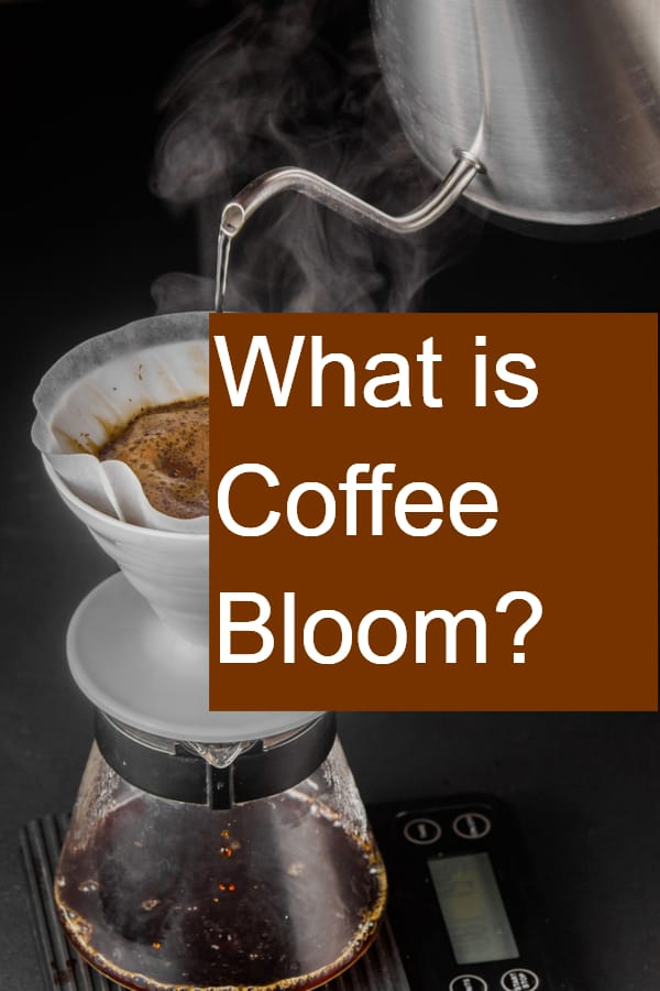 What is Coffee Bloom - Pin